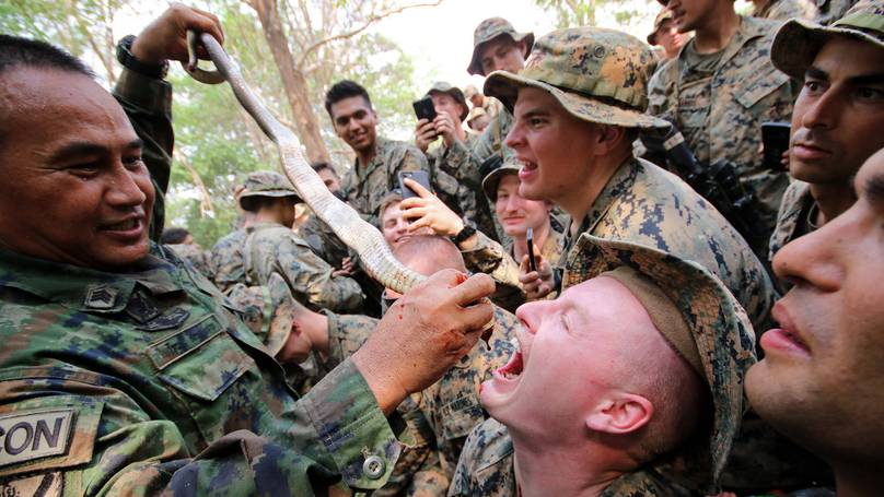 Military drills where soldiers eat live animals and drink snake blood could spark a new pandemic