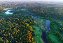 Scientists have recorded the movement of the border of taiga and tundra to the north using images from space