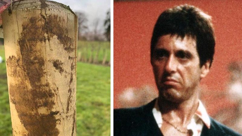 The man was surprised when he found Al Pacinos face on a wooden pole