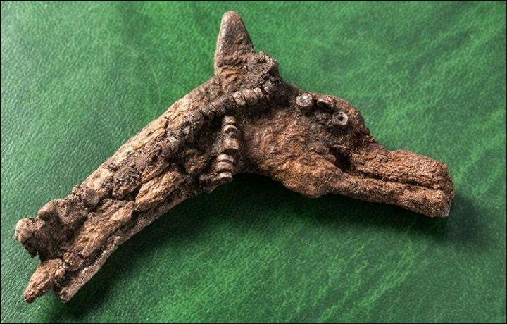 The mystery of stutuettes which are 4000 years old found in an ancient burial in Siberia 2