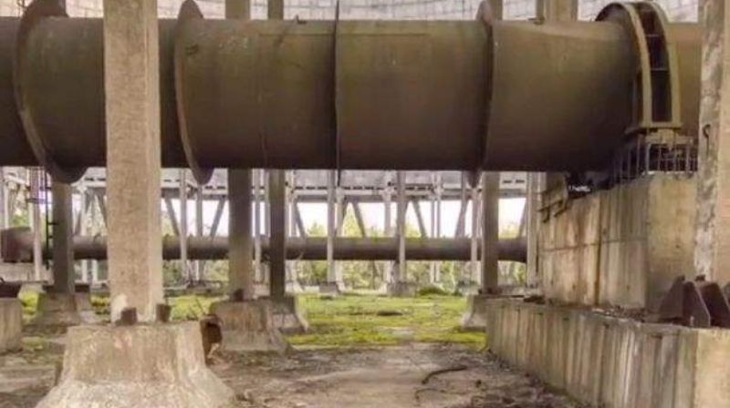 Web users were scared by a terrible find near the Chernobyl nuclear power plant