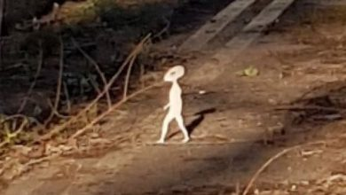 A resident of Great Britain captured a small humanoid on camera