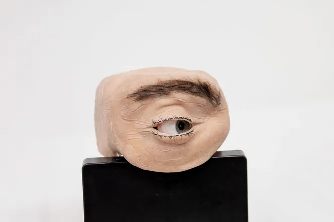 A creepy webcam that will take away your urge to chat on Zoom