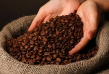 Coffee will disappear due to climate change