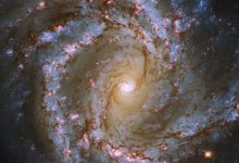 Hubble captures the mesmerizing spiral galaxy M61