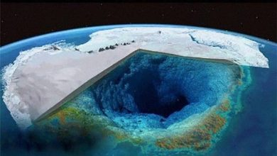 Huge spiders black and white photos and an asteroid underground what is hidden by the ice of Antarctica 3