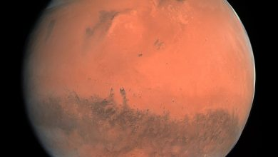 Real Mars The Untold Mysteries of the Red Planet