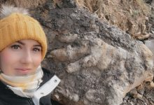 The girl was collecting shellfish and came across a giant dinosaur footprint