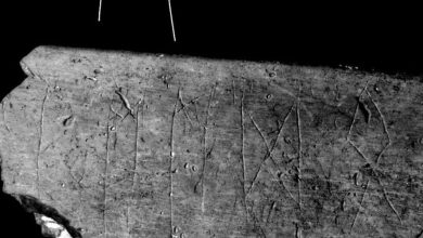 2400 year old cow bone with runic inscriptions found in Czech Republic