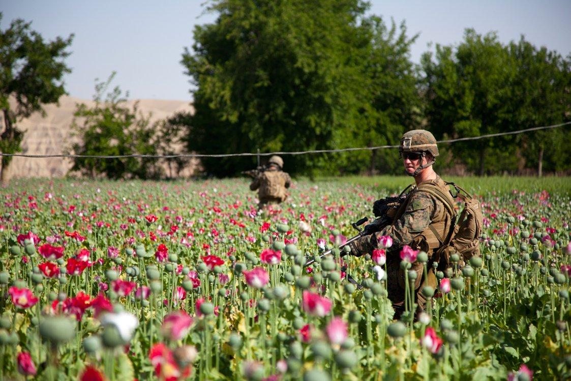 Afghan drugs 2