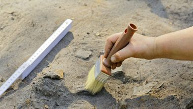 Archaeologists have found more than 1 000 artifacts of the Stone Age in the center of Krasnoyarsk