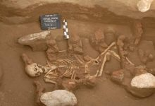 DNA analysis reveals the origin of the first European civilization of the Bronze Age