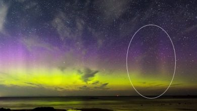 Mysterious BLACK Northern Lights appear over Scotland