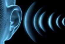 The auditory system can track the movement of objects along with the visual