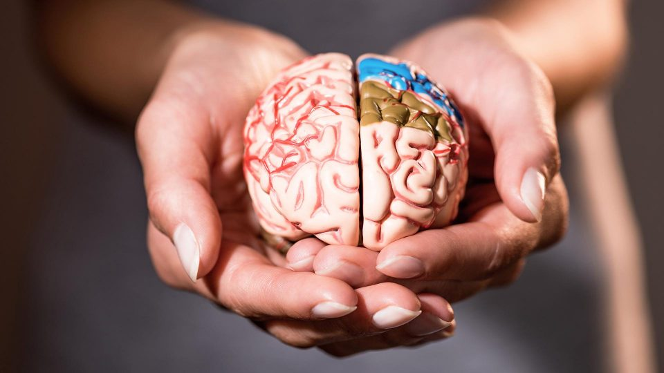The cause of the occurrence of a common brain disease