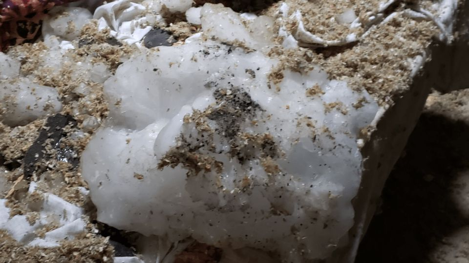 In Wisconsin a block of ice fell from the sky and broke through the roof of a house