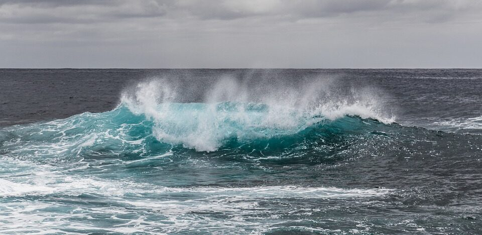 The existence of the fifth ocean on Earth is officially recognized