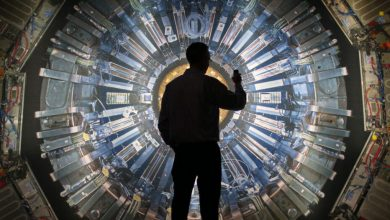A new particle was discovered at CERN it has a double open charm