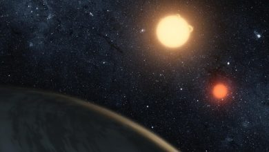 Astronomers told when the first stars began to shine in the universe