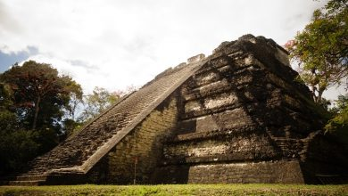 Feces of ancient people told about the size of the Mayan civilization