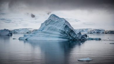 High concentrations of hazardous chemicals found in the Arctic