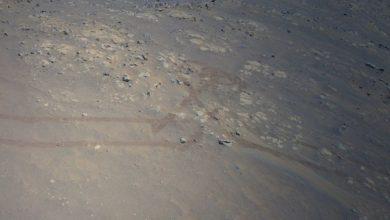 Ingenuity finds heart shaped footprints on Mars