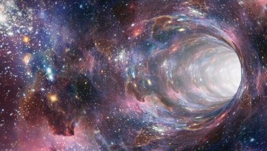 The fourth dimension in the universe can solve the problem of dark matter