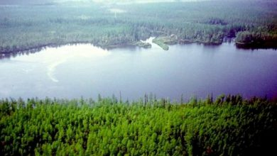 Where the Tunguska meteorite could have disappeared a scientific hypothesis