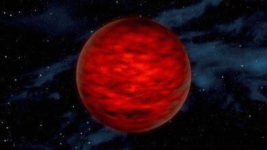 Half planet half star found near Earth
