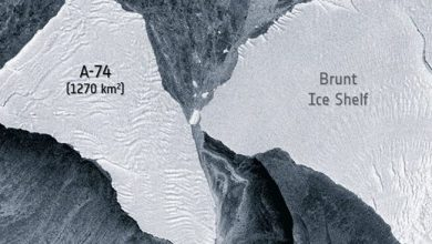 Huge iceberg nearly crashed into Antarctica