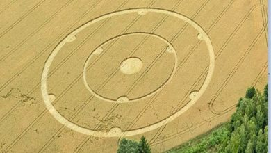 In Germany a drawing was discovered on the field 1