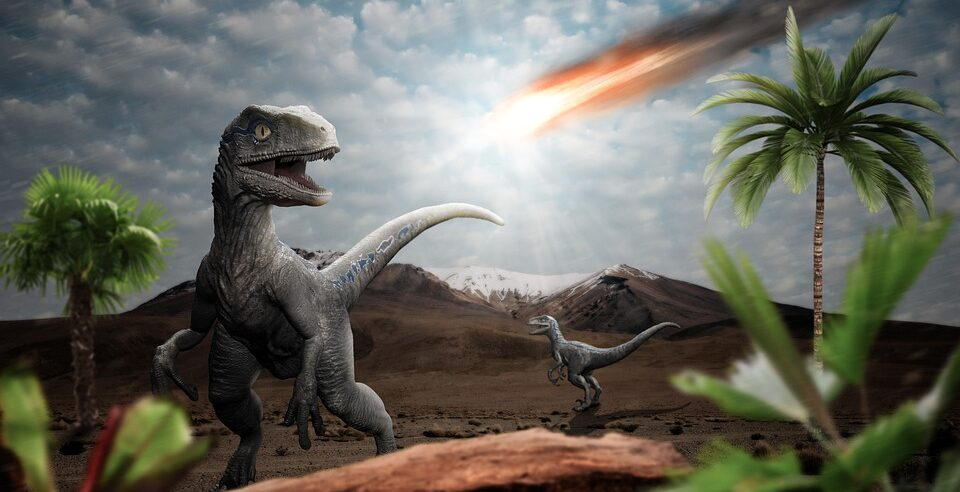 It turned out where the asteroid that killed the dinosaurs came from