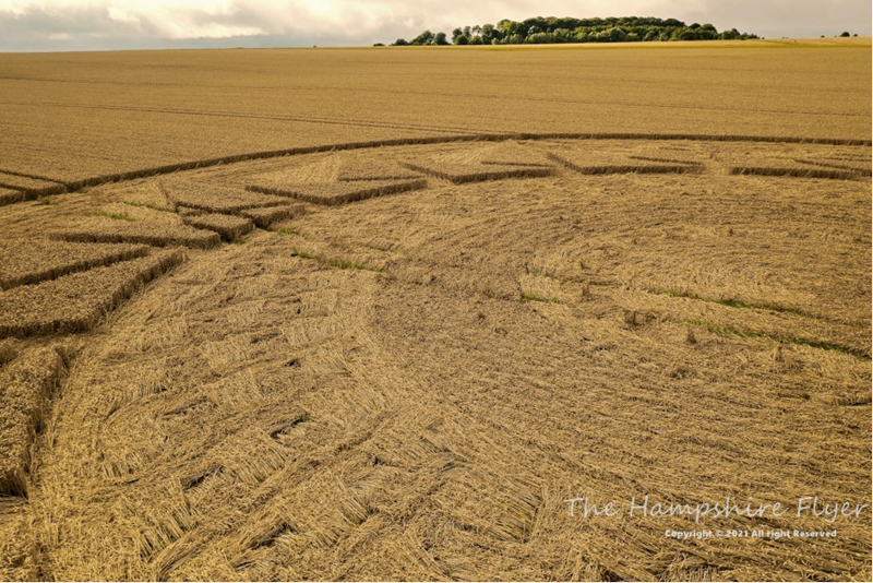 New field drawing discovered in Wiltshire England 3