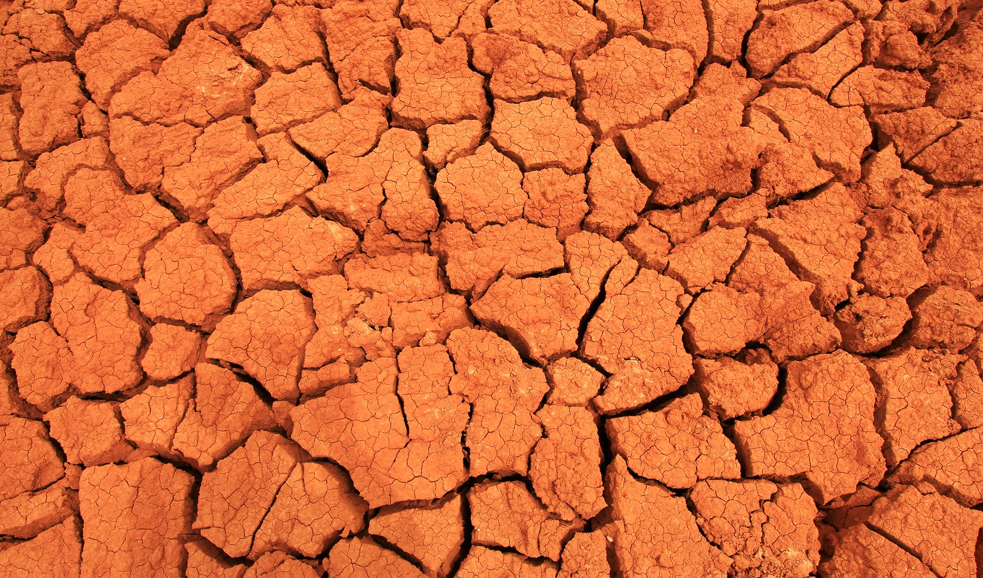 Not a single good news Highlights from the IPCC report on climate change