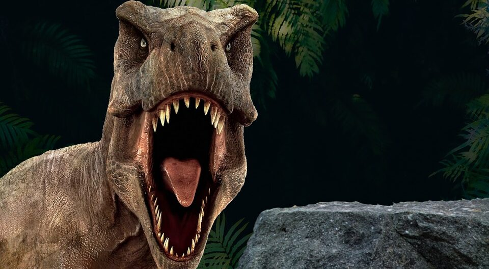 Sensors found in the jaws of Tyrannosaurus Rex