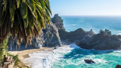 Traces of a natural disaster found on the Pacific coast