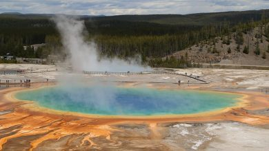 Yellowstone has a record number of earthquakes in a month