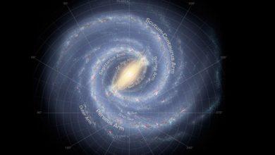 Another surprising property found in the Milky Way