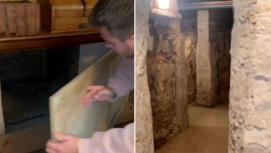Briton discovered mysterious catacombs under his house