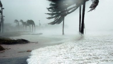 Climatologists have warned of an increase in the number of natural disasters