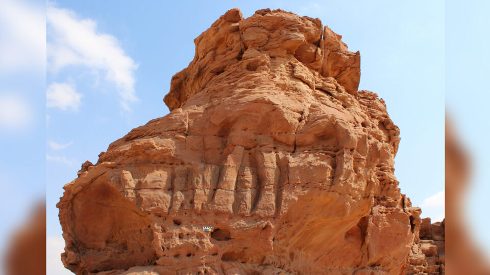 In Saudi Arabia found a caravan of stone camels aged 8 thousand years