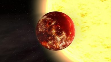 New evidence found for Planet X