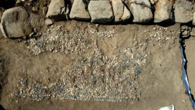 Oldest 3500 year old mosaic discovered in Turkey