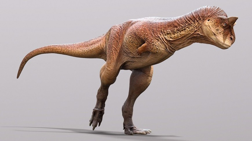 Paleontologists have restored the appearance of the carnivorous bull