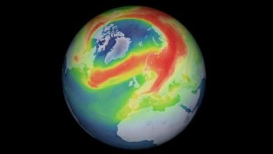 The reason for the formation of a huge ozone hole over the Arctic
